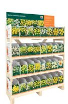 De Ree UK Daffodil Collection
